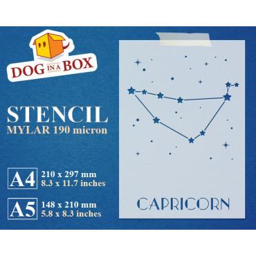 Capricorn constellation...
